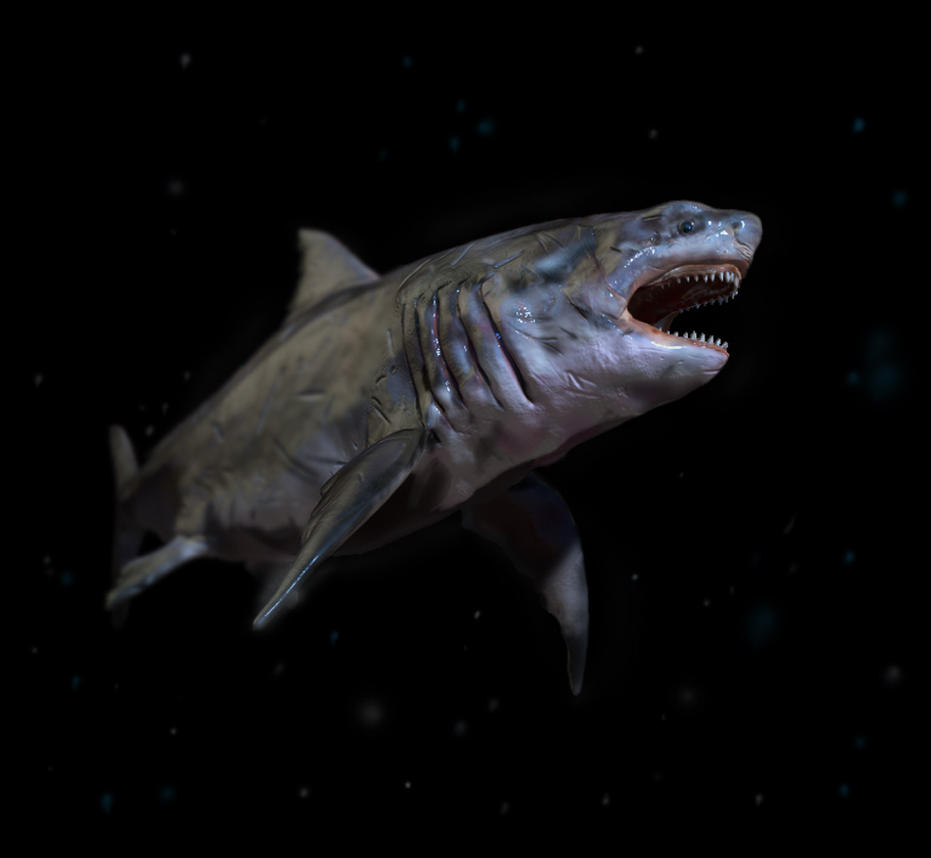 Deep Sea Megalodon by FutureAesthetic