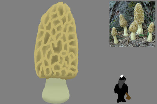 DF Mushroom Trees - Spore tree