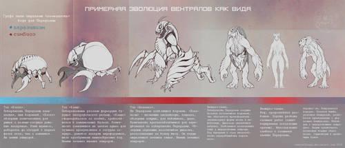 evolution of ventrals by VentralHound