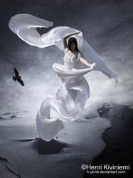Dreamer by HVMK