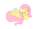AT: Angel and Fluttershy napping