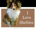 I Love Shelties by Loulou13