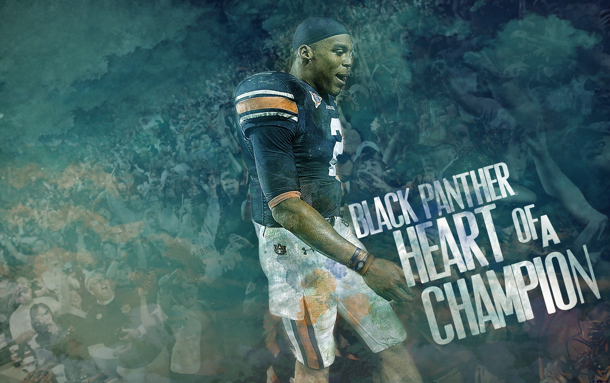 cam newton wallpaper by 31andonly on deviantart