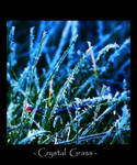 Crystal Grass by NorwegianAnette