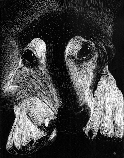 A Scratch Art Dog By Andefox3