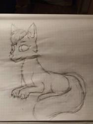 Leon Lisov (Me, feral fox).