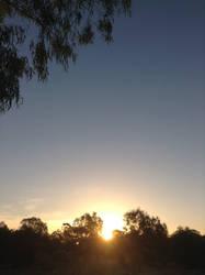 The Australian Sunset