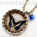 the butterfly collection 12