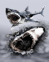 Great White Shark by kidtrip98
