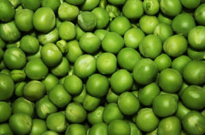 Peas...not in a pod by Loy-Pinheiro