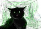 Hollyleaf by leopard1220
