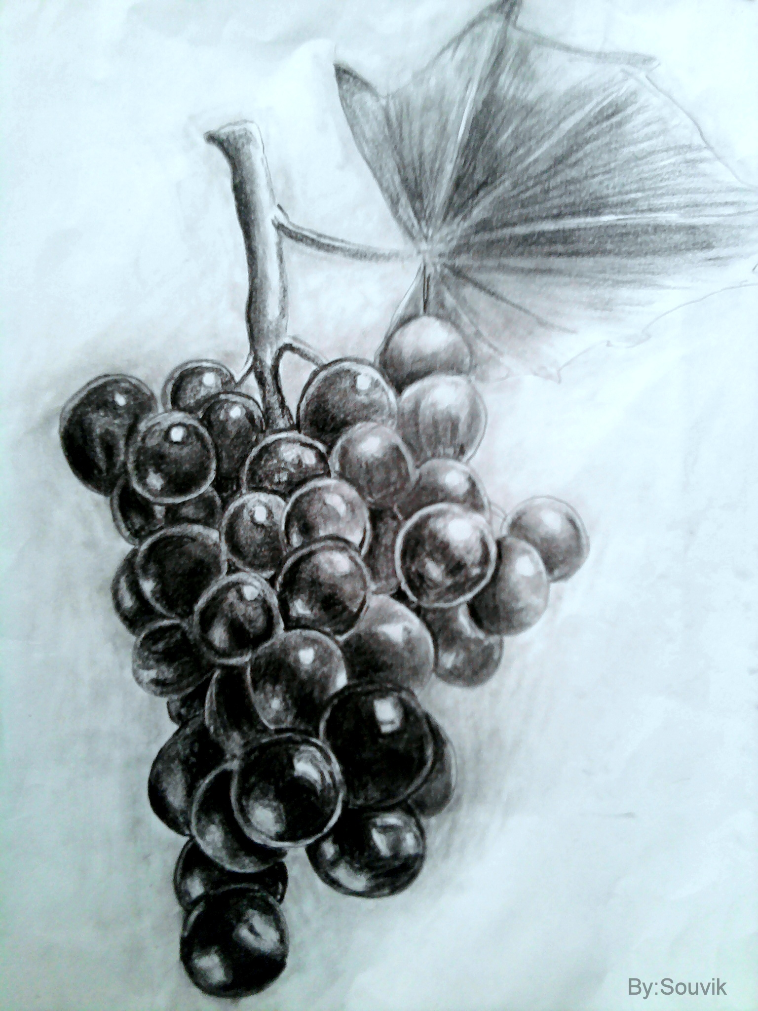 grapes by Skworld