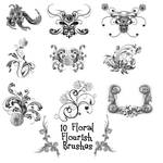 10 Floral Flourishes PS Brushe