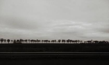 Ligne by Thynies