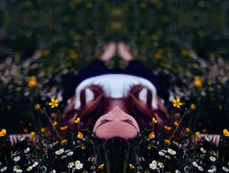 Symmetric dreams by Thynies