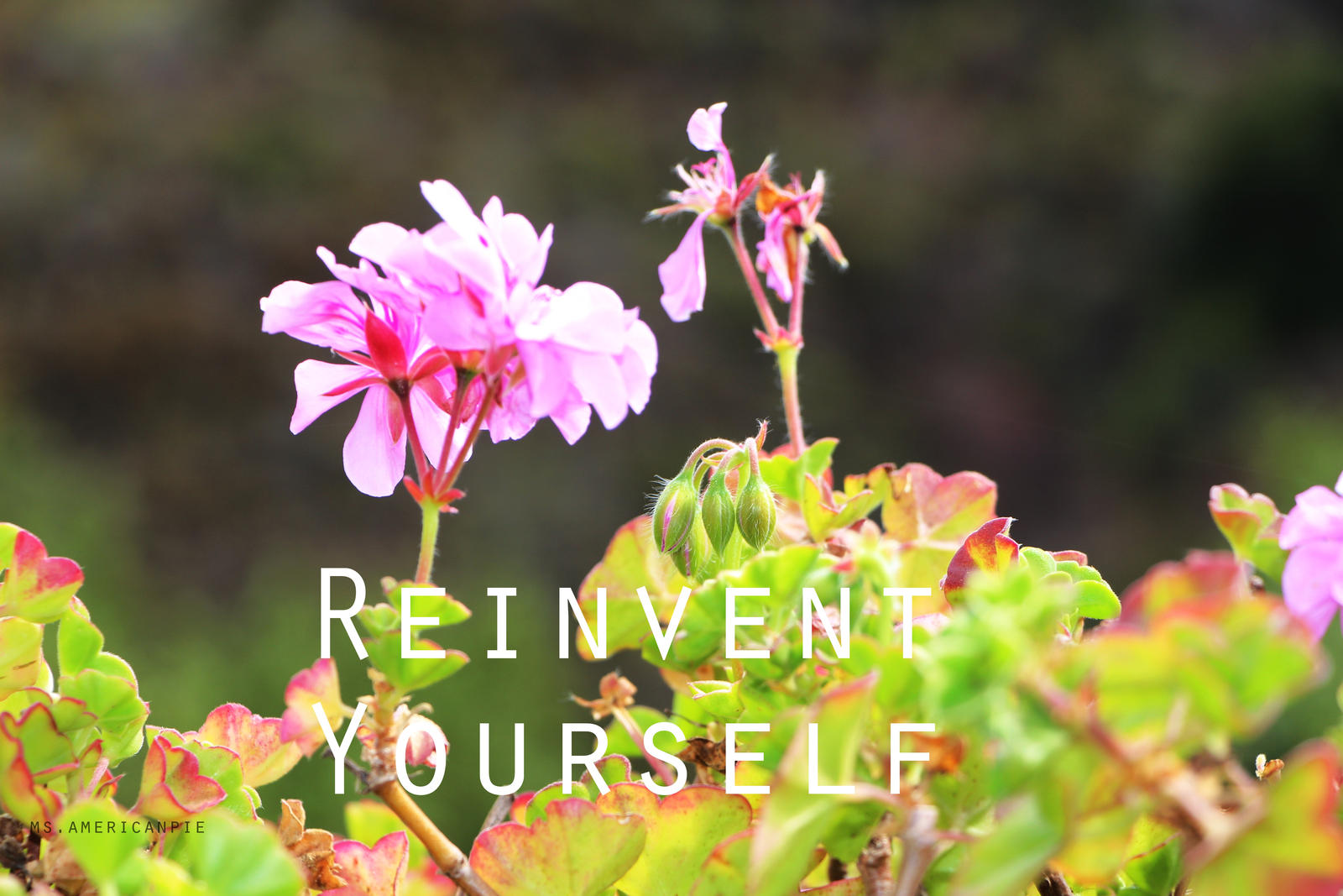 Reinvent Yourself by ms-americanpie