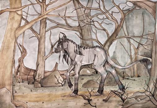 Niccosia|DTA|The lost mare