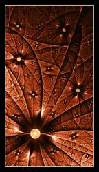 Interstellar Forces