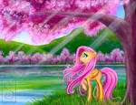 Fluttershy Viewing Cherry Blossoms