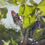 Pusheen in an Apricot Tree by MonicaOrona
