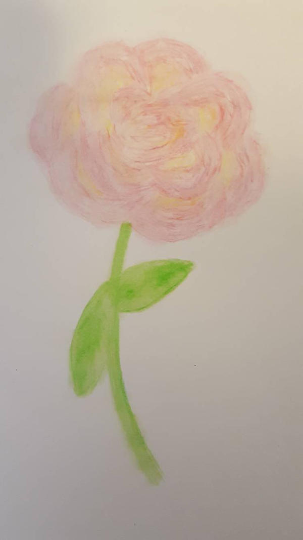 Rose - watercolor pencils wet (2 of 3)