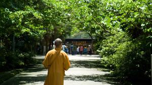 Po Lin Monastery by parka