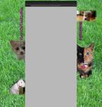 youtube layout for KittyOfTheXuBox