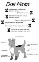 Dog Meme by drachenlilly
