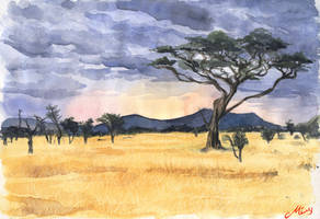 In the dry Savannah by malta