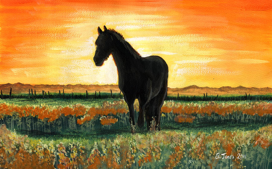 Sunset Horse by BenJonesIllustration on DeviantArt