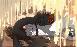 MessySleep