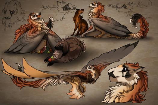 Gentle bird of prey