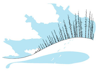 Snowish Birchy by mmiller8