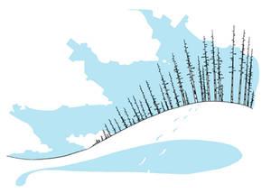 Snowish Birchy
