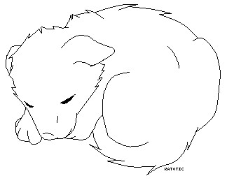 how to draw wolf pup