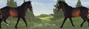 EGE - Gum Shoe - 03 by LadyDox