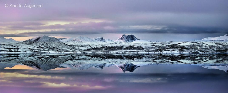 Cold Beauty by A-Motive