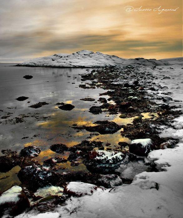 Golden Shore by Hestefotograf