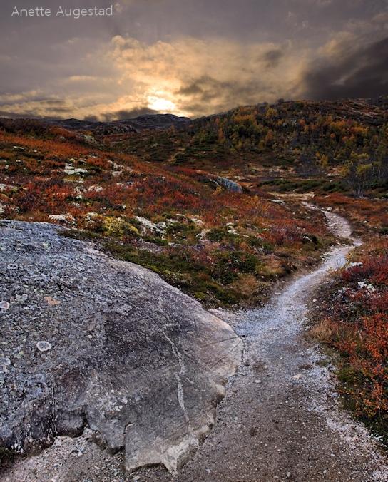 Роскошные пейзажи Норвегии - Страница 7 D5gg38f-8f2c5f41-9186-4e2f-84ef-b68627c7d886.jpg?token=eyJ0eXAiOiJKV1QiLCJhbGciOiJIUzI1NiJ9.eyJzdWIiOiJ1cm46YXBwOjdlMGQxODg5ODIyNjQzNzNhNWYwZDQxNWVhMGQyNmUwIiwiaXNzIjoidXJuOmFwcDo3ZTBkMTg4OTgyMjY0MzczYTVmMGQ0MTVlYTBkMjZlMCIsIm9iaiI6W1t7InBhdGgiOiJcL2ZcLzBkYjk4NWRhLWQ4ZDAtNDg3Ni1iMDA3LThmY2NmZDk3NDljZlwvZDVnZzM4Zi04ZjJjNWY0MS05MTg2LTRlMmYtODRlZi1iNjg2MjdjN2Q4ODYuanBnIn1dXSwiYXVkIjpbInVybjpzZXJ2aWNlOmZpbGUuZG93bmxvYWQiXX0