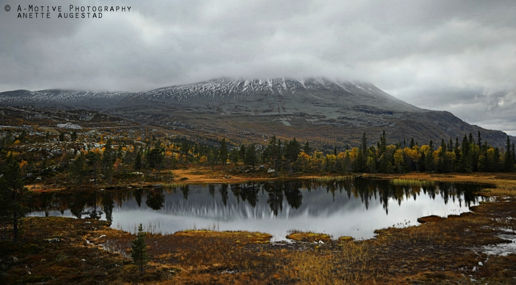 My Norway by Hestefotograf