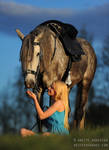 Girl And Her Lusitano