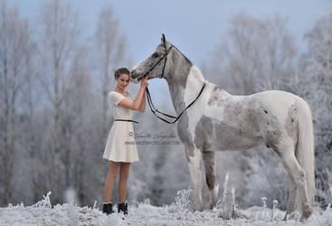 Snow Palette by Hestefotograf