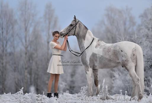 Snow Palette