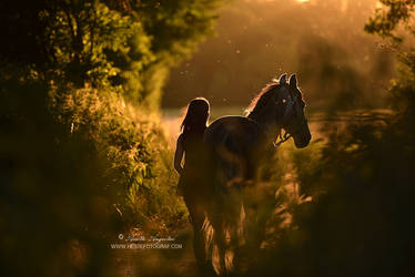 A Midsummer Night's Dream by Hestefotograf