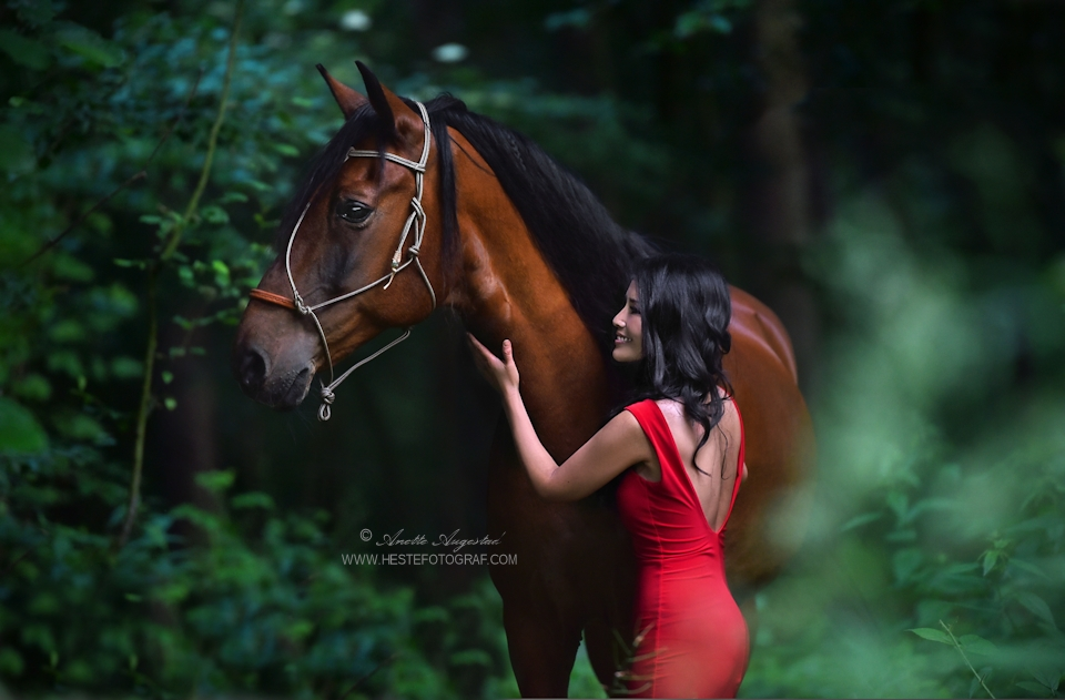 Lady In Red by Hestefotograf