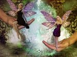 Who is the Fairest Fairy?