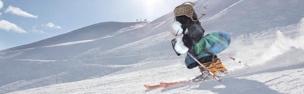 Lil monito skiing