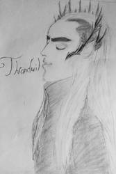 Thranduil fan art by a-name-is-required