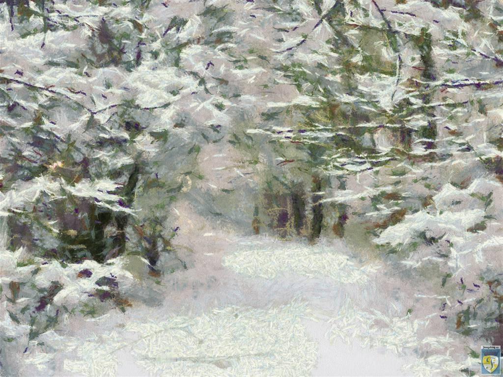 White snow by imageking10