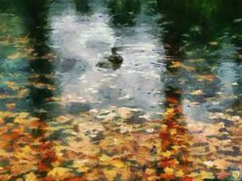 swimming in the rain by imageking10